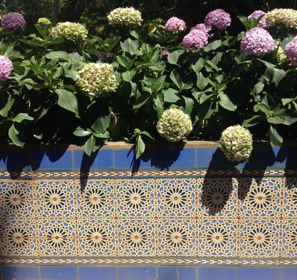 tiles and flowers