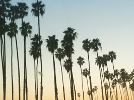 LA: Vintage inspiration, new friends and sunshine